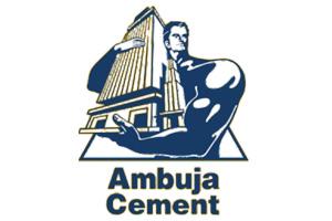 Ambuja Cement, Jib Crane Supplier in India