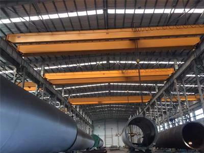 Double Girder EOT Crane, Goliath Crane Manufacturer